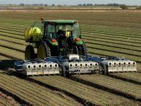 Robot trồng rau diếp của Blue River Techonology.