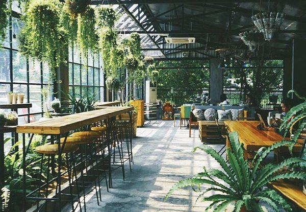 Thiết kế vị trí cây xanh độc đáo với chỗ ngồi của khách hàng