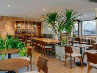 Thuê cây cảnh giúp cửa hàng có thể trang trí được nhiều cây xanh hơn với giá hấp dẫn hơn