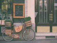 Cách chọn cây xanh cho quán café theo từng vị trí đặt